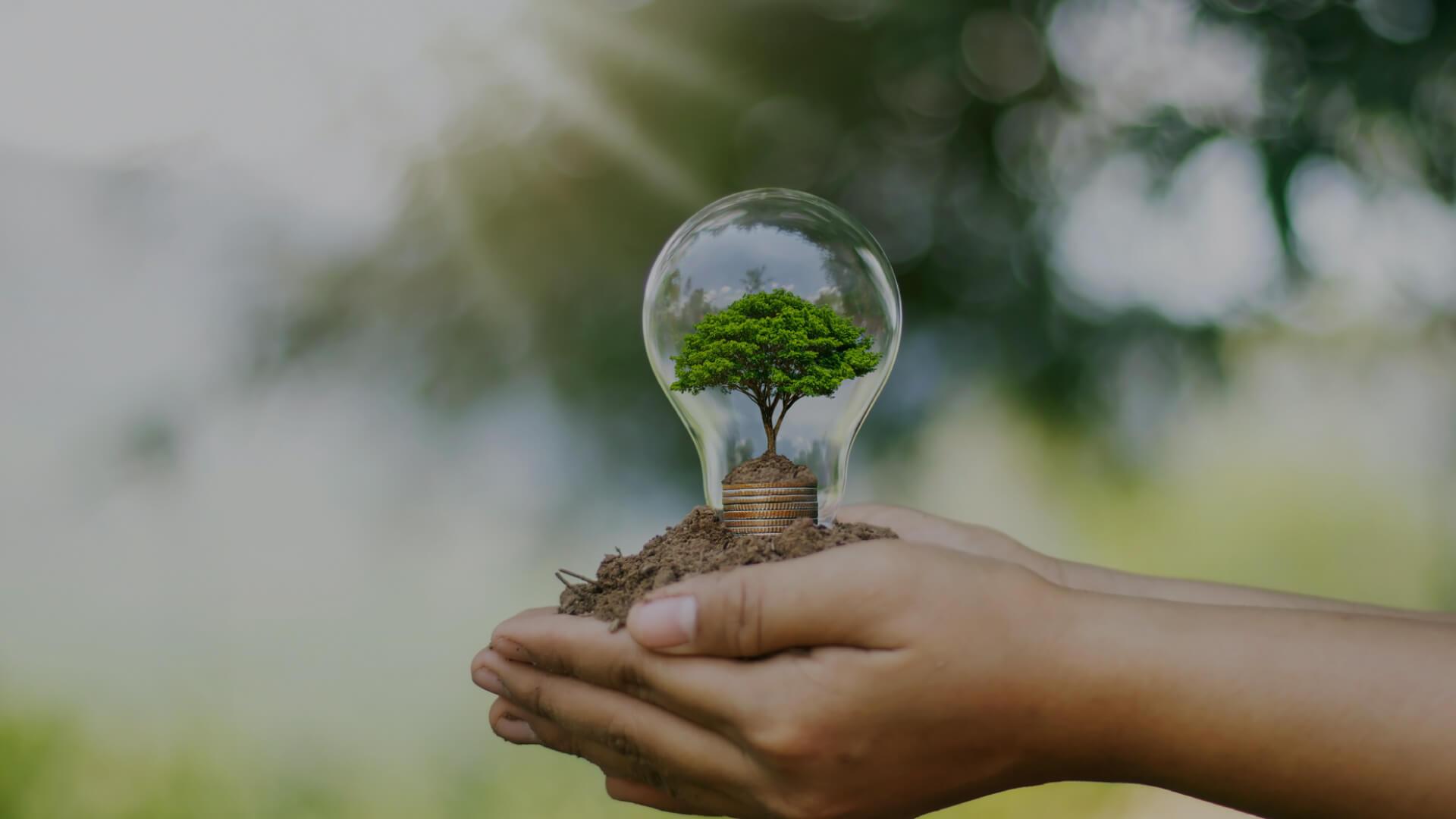 ECOINSIDE estreia método inovador de instalação de central fotovoltaica