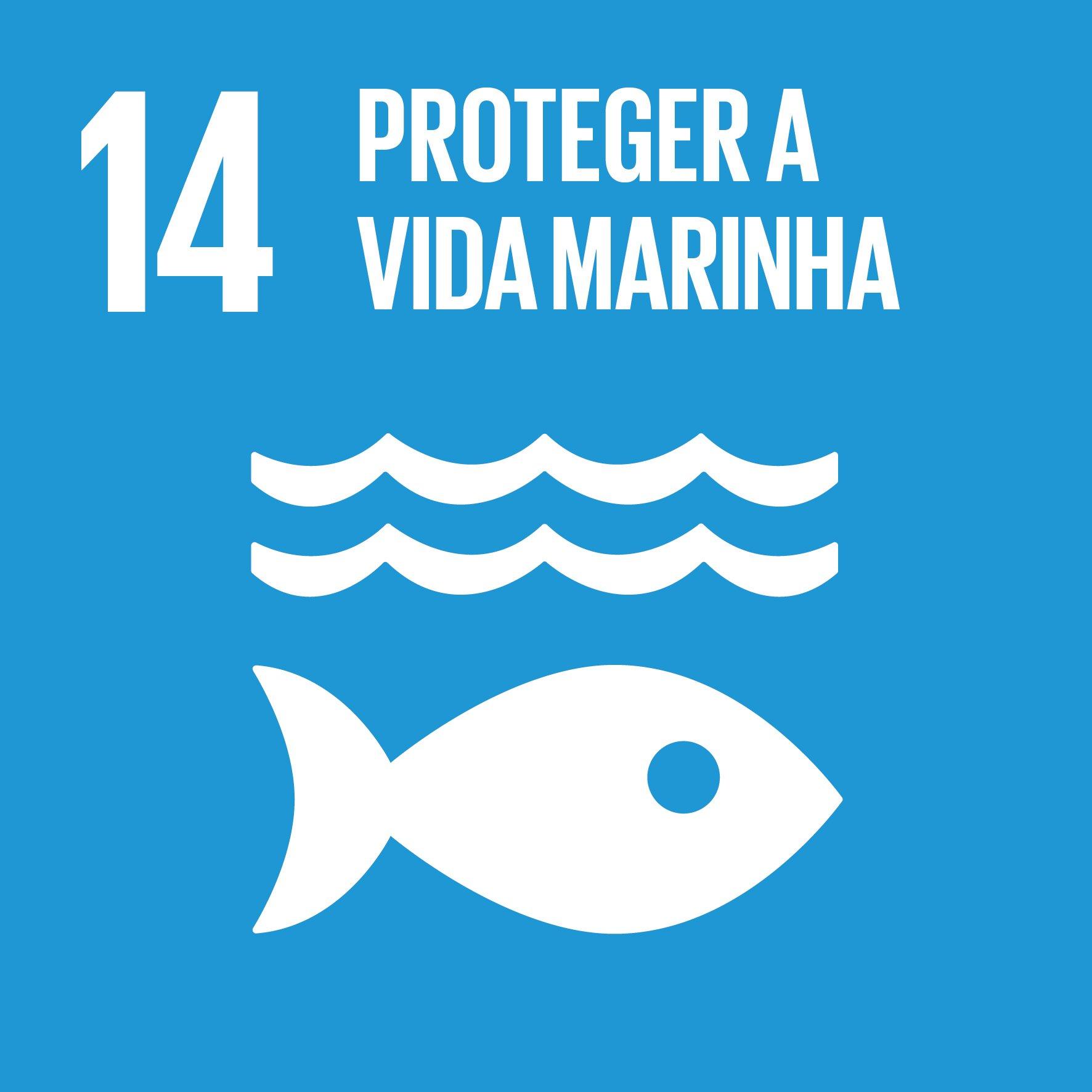 Proteger a vida marinha